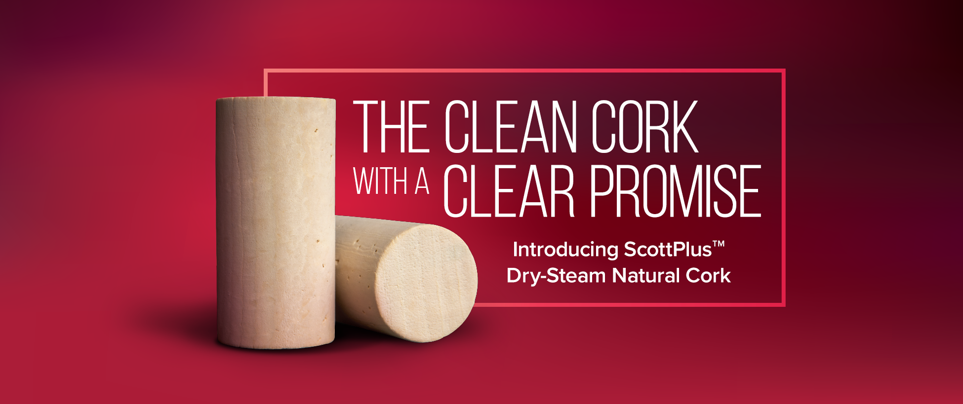 Scott Plus Cork: A Clean Cork with a Clear Promise